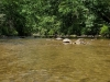 Chattooga River 13445269